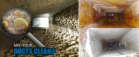 Central Duct Cleaning and Repairing