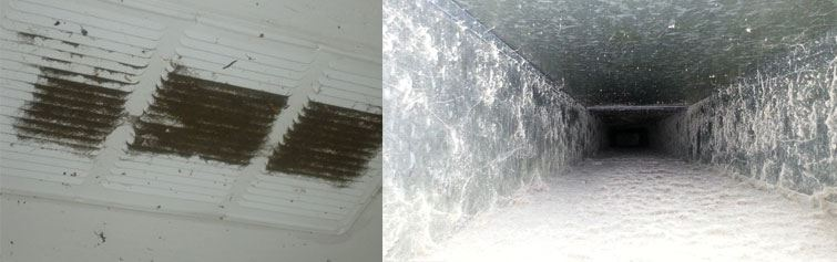 Best Duct Cleaning Services Main Ridge
