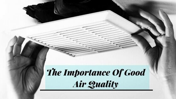 The Importance Of Good Air Quality