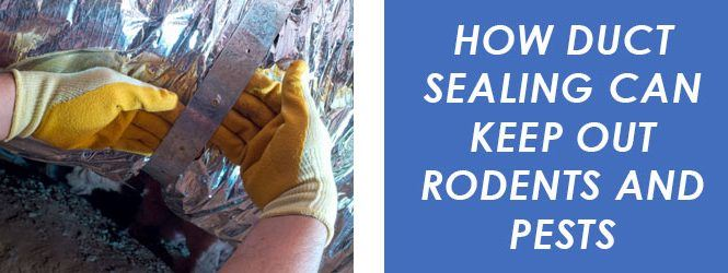 How Duct Sealing Can Keep Out Rodents and Pests