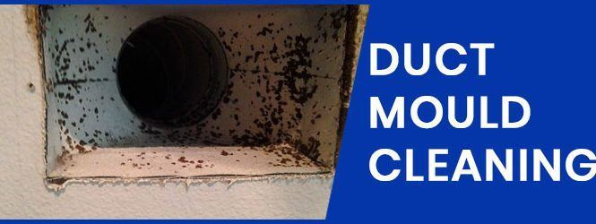 Duct Mould Cleaning
