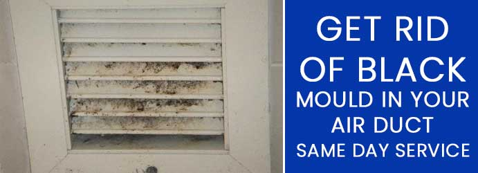 Get Rid of Black Mould in Your Air Duct