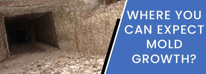 Get Rid of Mildew and Mold