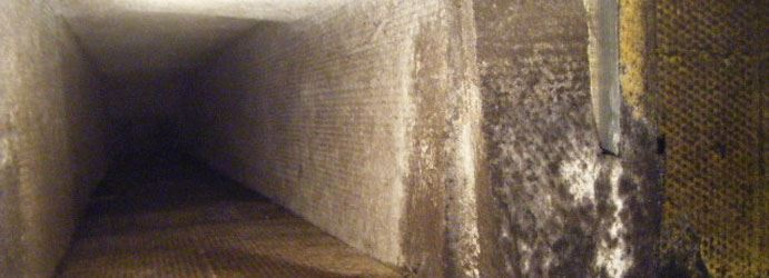 Mould Growth Inside The Ducts in Melbourne