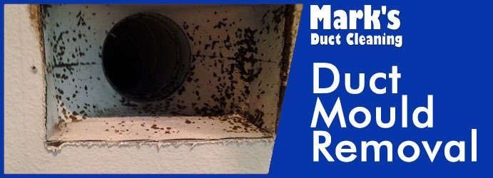 Duct Mould Removal Spring Gully